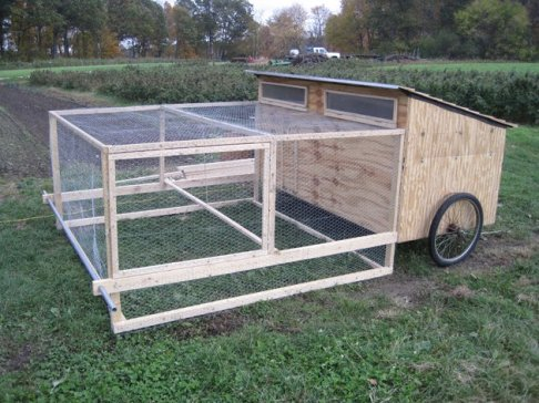 Custom Chicken Tractor